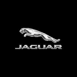 11Jaguar Logo